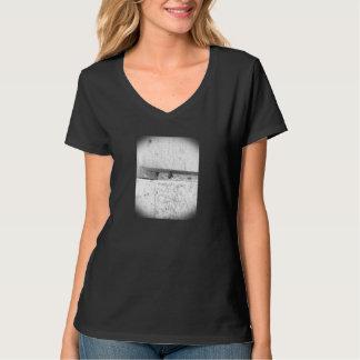 daddy long leg v neck T-Shirt