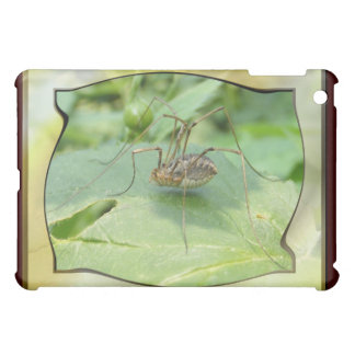 Daddy Long Legs ~ case Case For The iPad Mini