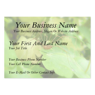 Daddy Long Legs In The Garden Large Business Cards (Pack Of 100)