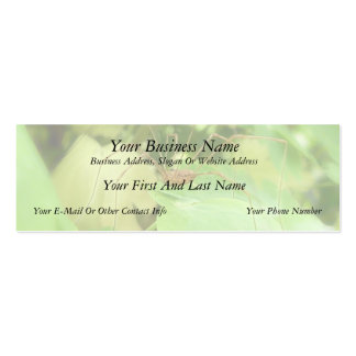 Daddy Long Legs In The Garden Double-Sided Mini Business Cards (Pack Of 20)