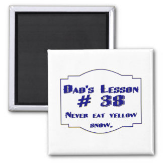 Dad's lesson #38 magnets