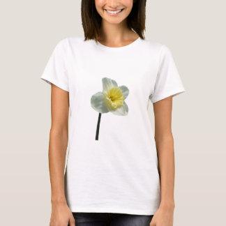 Daffodil 174 ~ T-shirt