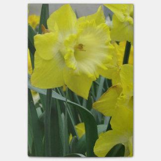 daffodil-22.JPG Post-it® Notas