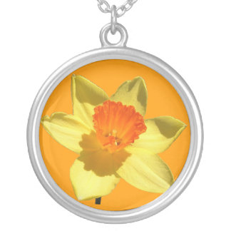 Daffodil (Background Removed) Silver Plated Necklace