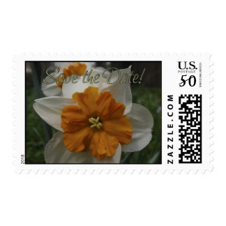 Daffodil Barrett Browning. Save the Date. Postage