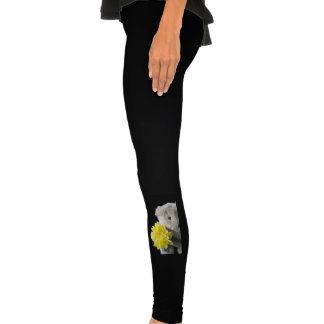 daffodil bear leggings
