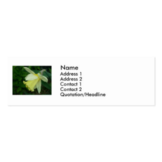 Daffodil Double-Sided Mini Business Cards (Pack Of 20)