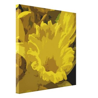 Daffodil Stretched Canvas Print