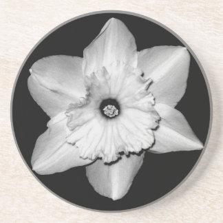 Daffodil Close-up (B&W) Coaster