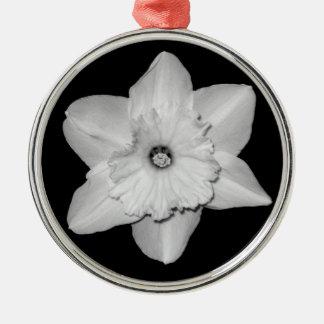 Daffodil Close-up (B&W) Ornament