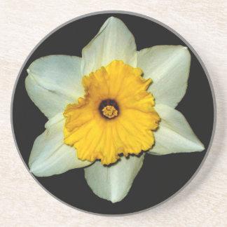 Daffodil Close-up Coaster