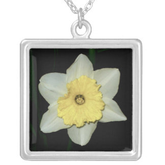 Daffodil Close-up  Necklace