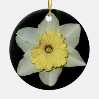 Daffodil Close-up  Round Ornament Round Ceramic Ornament