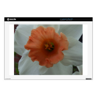 """Daffodil Decal For 17"""" Laptop"""