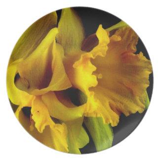 Daffodil Drama #1 Art Photo Wall Decor Gift Plate