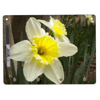 Daffodil Dry Erase Board