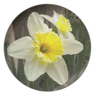 Daffodil Duo Collector Plate