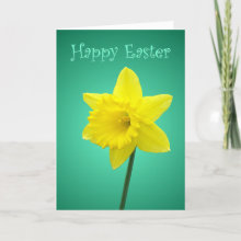 Daffodil Easter Card - An Easter card featuring a daffodil on a green shaded background with 'Happy Easter' on the front in a curly decorative font and also written inside. Photo / Design by Nicolette Amanda Berry.