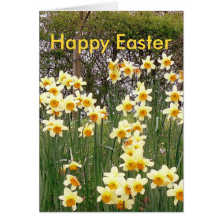 Daffodil Field In Springtime Easter Greeting Card