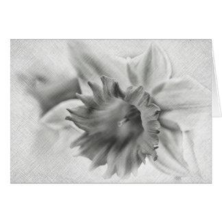 Daffodil flower card