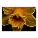 Daffodil Flower Fractal Card