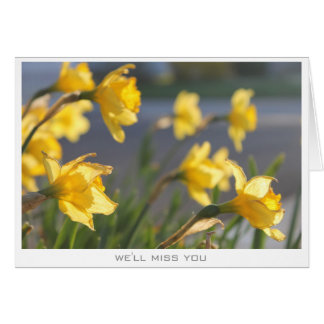 Daffodil flower miss you card