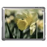 Daffodil Flower Photography iPad Case