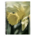 Daffodil Flower Photography Spiral Note Book