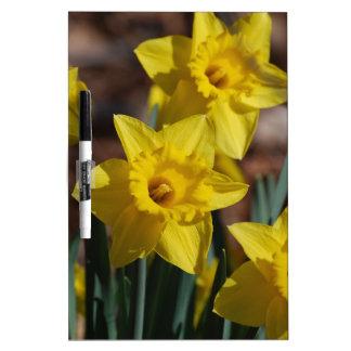 Daffodil Garden Dry-Erase Board
