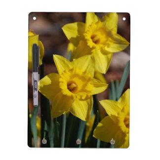 Daffodil Garden Dry Erase Board