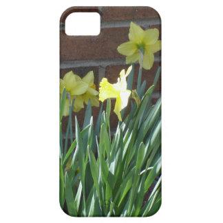 Daffodil Garden iPhone SE/5/5s Case