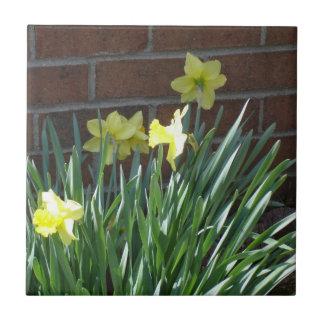 Daffodil Garden Tiles
