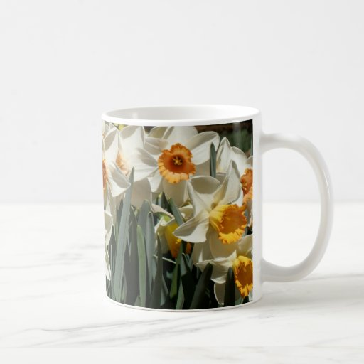 Daffodil Hill Coffee Mug