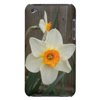 Daffodil iPod Touch Case