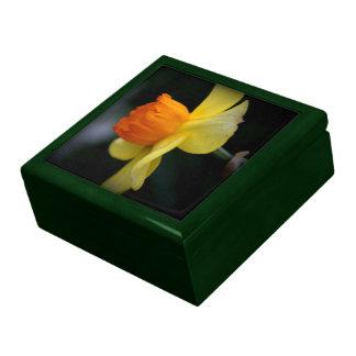 Daffodil Jewelry Box