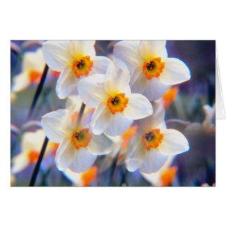 Daffodil Kalaidescope Card