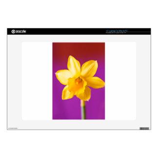 Daffodil Laptop Skins