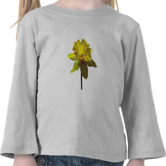 Daffodil Looking Up T-shirts