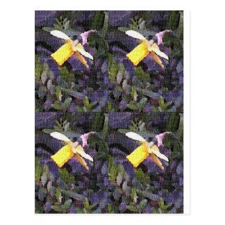 Daffodil Medley Postcard