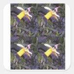 Daffodil Medley Square Sticker