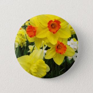 Daffodil Mix Simple Pinback Button