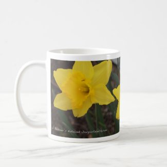 Daffodil Mug from A Gardener's Notebook