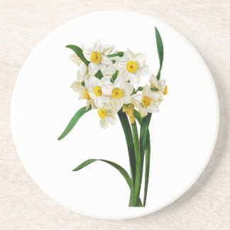 Daffodil or Narcissus By Pierre Joseph Redoute Drink Coaster