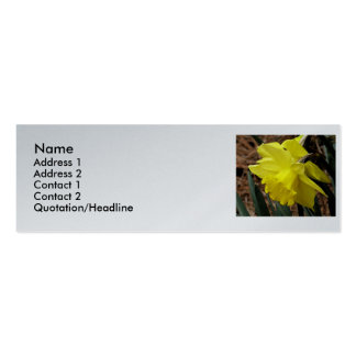 Daffodil platinum cards Double-Sided mini business cards (Pack of 20)