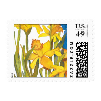 Daffodil square postge postage stamp