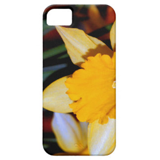 Daffodil  the flower for 10th anniversary iPhone 5 case