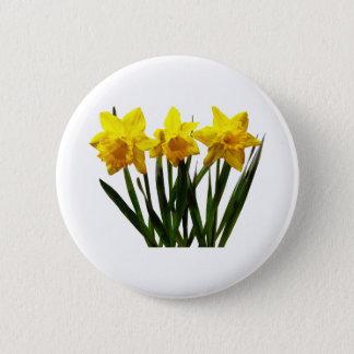 Daffodil Trio Pinback Button