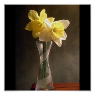 daffodil Vase Poster