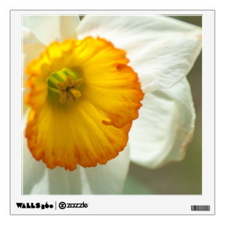 Daffodil Wall Sticker