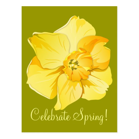 Daffodil Yellow Short-Trumpet Spring Flower Postcard